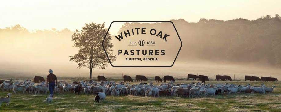 White Oak Pastures Newsletter Signup form